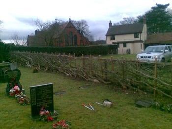 thumb_wsp-12-hedge-laying-at-gentleshaw-church